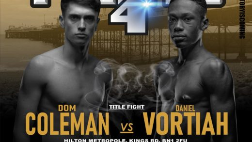 Victory fights 4 poster