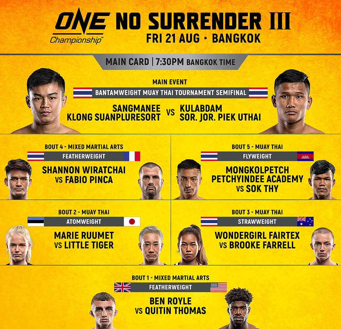 ns 3 fight card